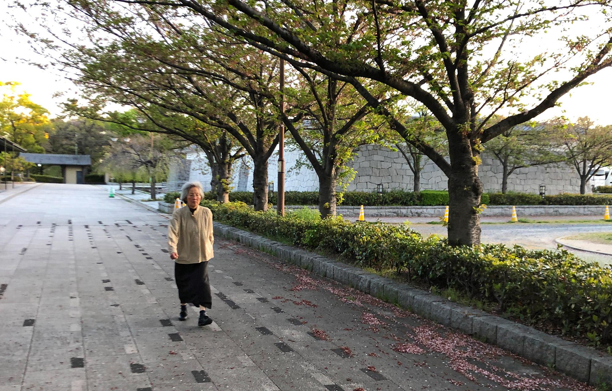 Sakura Michi